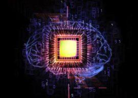 BioEngineering and BioMedicine – Call for Articles